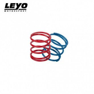 Leyo Blow Off / Diverter Valve Schub-Umluftventil Upgrade-Federn